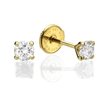 yellow gold Martini Stud Earrings